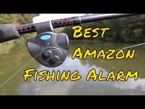 #1 Best Amazon