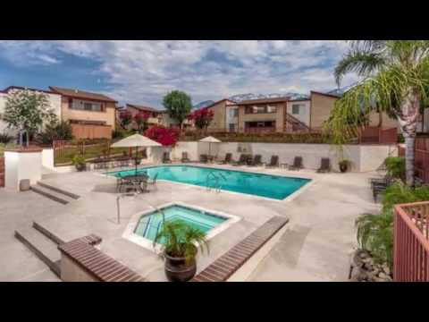 Don Miguel Apartments In Alta Loma Ca Forrent
