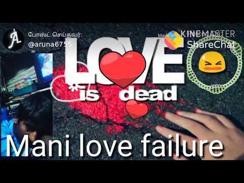 Mani love feeling song MP