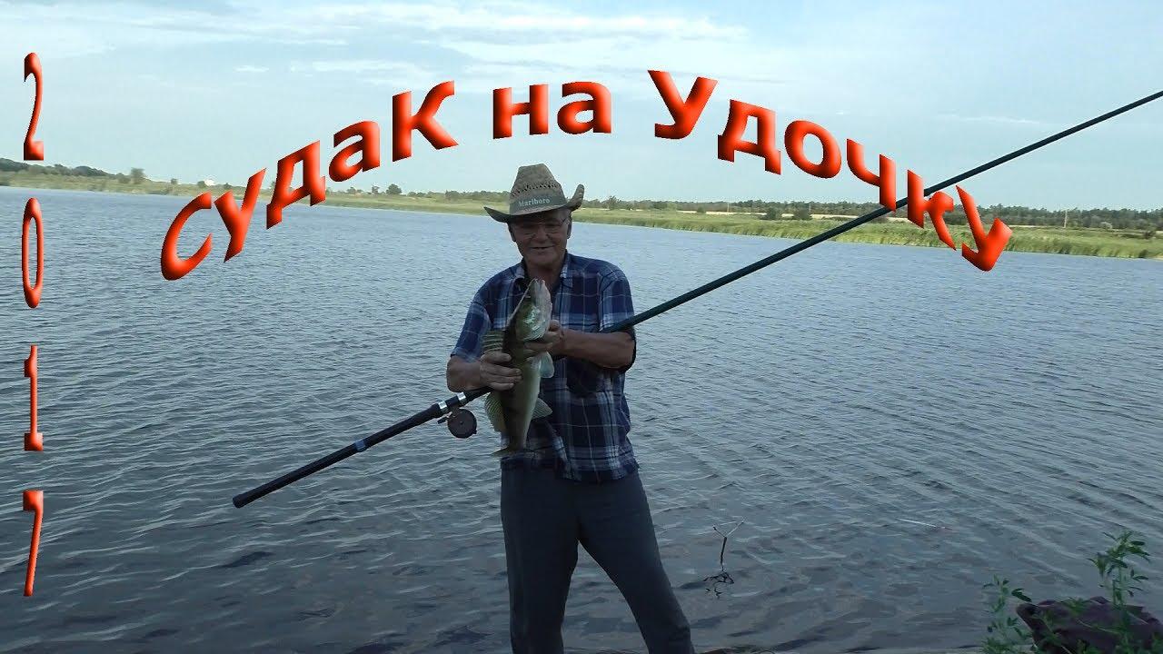 диалоги о рыбалке щука судак