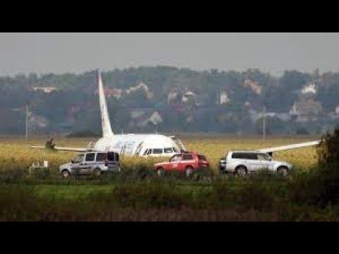 """Экипаж А321, упавшего в кукурузу, был внесен в """"Миротворец"""""""