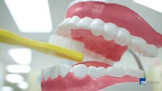 CDI College - Dental Assisting Program - Long Version