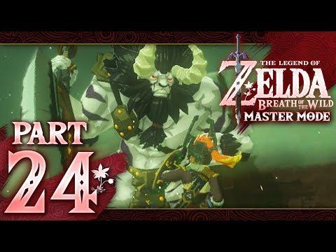 The Legend of Zelda: Breath of the Wild (Master Mode) - Part 24 - Missing Heroine