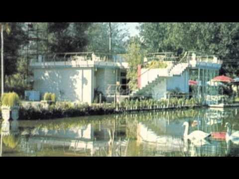 ducktails-killin-the-vibe-barrett-lewis