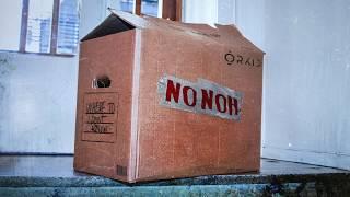 NoNoh - ORKID (Official Audio)...