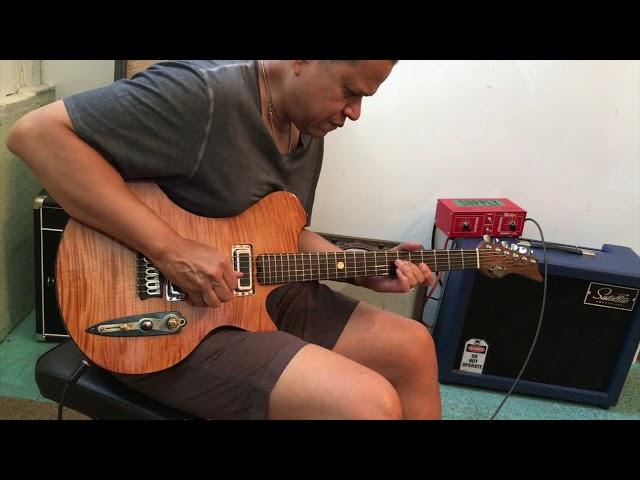 M-tone Guitars  - Flight Risk 7  - Eddie Martinez