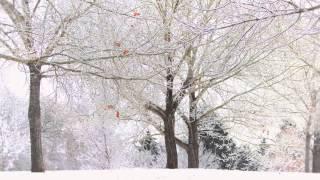 Winter Moon with Lyrics - Mindy Gledhill