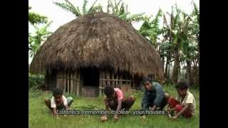 Pikon Ane (Voices from Papua) - Stafaband