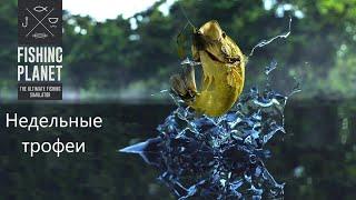 Недельные трофеи Fishing Planet 26 03 30 04