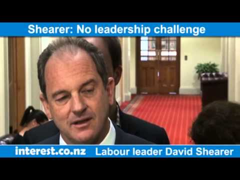 David Shearer on Labour Party leadership