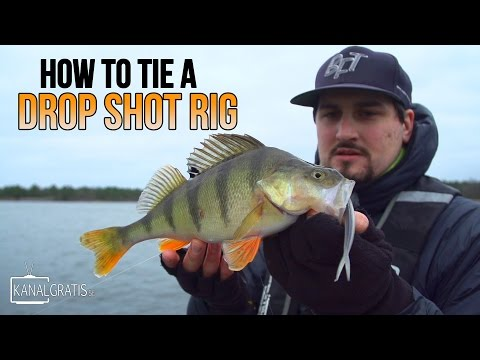How To Tie a Drop Shot Rig with Albin Sharghi