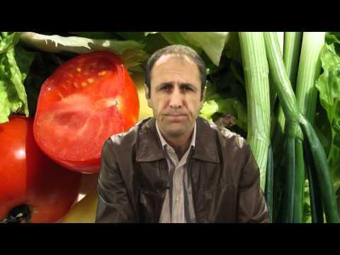 Why Bad Foods Taste Good and Good Foods Taste Bad, Nutrition Tips