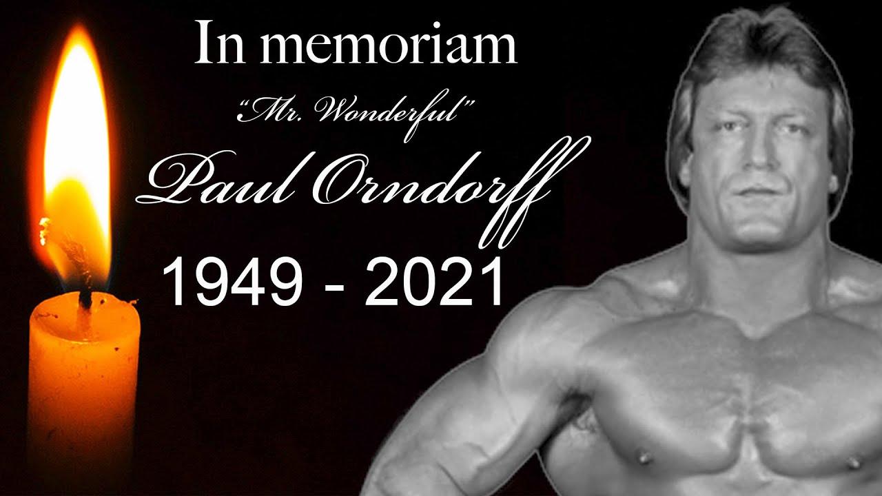 Paul Orndorff Dies: Wrestling Legend Known As Mr. Wonderful ...