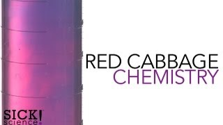 Red Cabbage Chemistry - Sick Science! #105