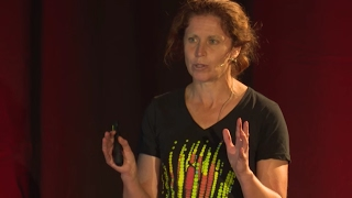 A mountain-sized telescope, under a mile of ice | Jenni Adams | TEDxChristchurch