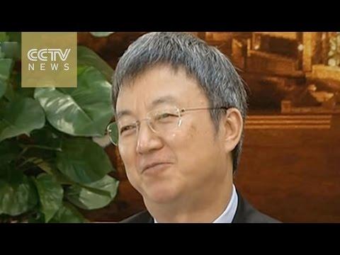 Renminbi turbulence had endangered IMF's decision