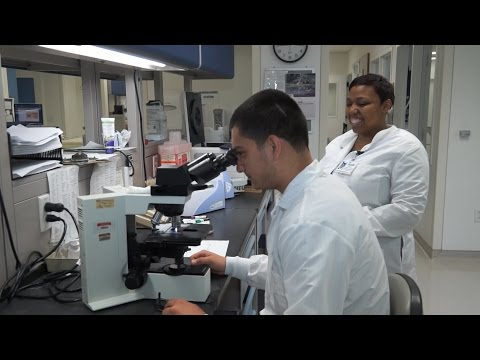 Shadowing program proves to be illuminating for Health Profession's students