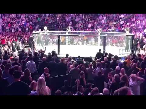 UFC 229 McGregor Khabib SCARY BRAWL, ALL ANGLES CrowdOctagon