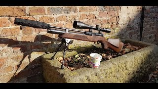 Air Rifle Pest Control - Woodies & The Grey Menace - Weihrauch HW100