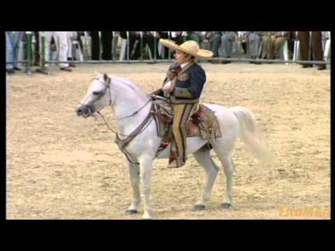 Cruz De Palo Antonio Aguilar