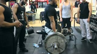 Flex Fitness - Bodybuilding & Fitness Motivation