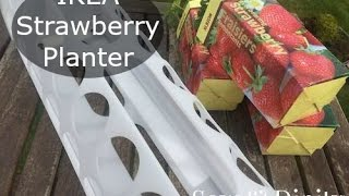 Ikea Strawberry Planter