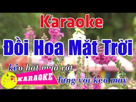 Đồi Hoa Mặt Trời (Remix) - Karaoke HD || Beat Chuẩn ➤ Bến Thành Audio Video