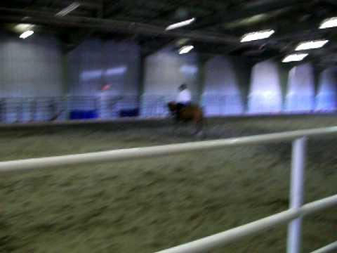 western riding pattern