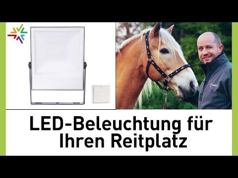 eiko led strahler floodlight cas 50w 220 240vac 5000k 5000lm ip65 au enleuchten leuchten. Black Bedroom Furniture Sets. Home Design Ideas