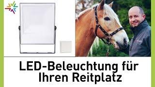 Reitplatz auf LED-Beleuchtung mit Funkschalter umrüsten – Vergleich Halogen mit LED-Strahler