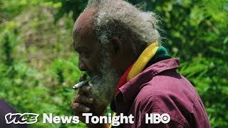 jamaicans are worried foreigners will take over the ganja market hbo