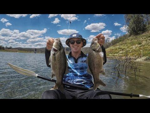 Cressbrook Dam Fishing