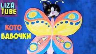 Смешные КОТЫ и ФОТОКАБИНКА 😸 Новое превращение котов LizaTube