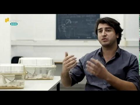 "RTP2 - ""A minha Tese"" - Nuno Franco (with English subtitles)"