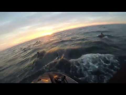 Offshore Vilano   12 20 2014