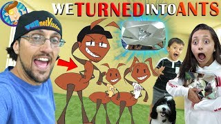 FUNnel Family turns into ANTS (FV Vlog Vision)