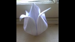 Origami Tulip (traditional) For Mothers' Day