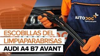 Cómo cambiar Escobillas del limpiaparabrisas delantero en AUDI A4 B7 AVANT INSTRUCCIÓN | AUTODOC