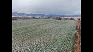 Успешно земеделие - броят от 03. 04. 2020
