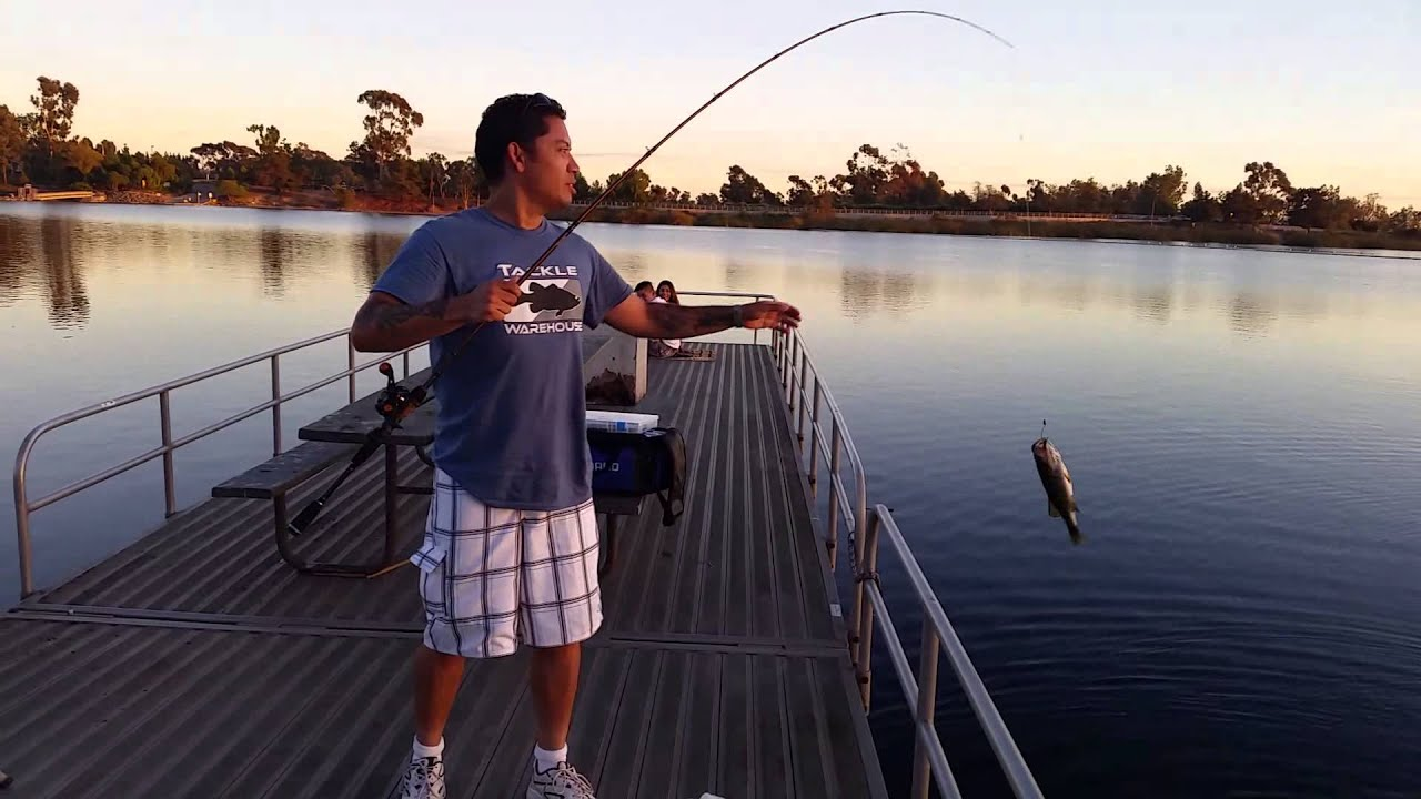 Largemouth bass from miramar lake youtube for Lake poway fishing report