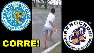 TERROR BICOLOR x REMOÇADA