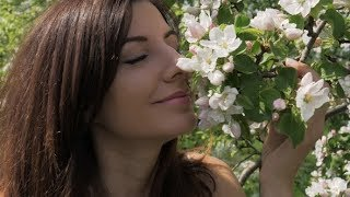 Young Caucasian Woman Sniffs Flowers Of Blooming Apple Trees In Garden | Stock Footage - Videohive