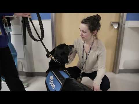 Dog Dialogue - Pet Therapy at St. Louis Children's Hospital