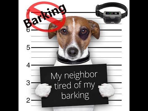bark-collar-/-anti-barking-control-device-for-large-medium-small-dog