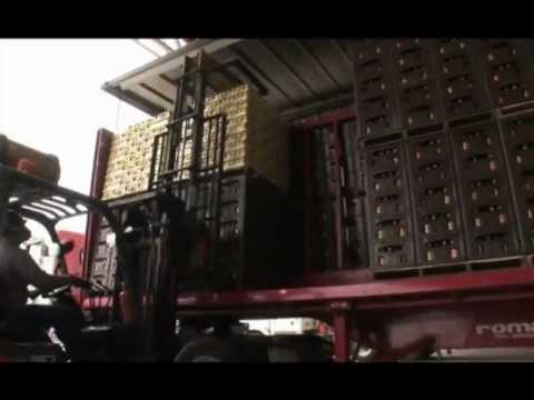 Mercadeo Agroindustrial del Tomate de YouTube · Alta definición · Duración:  4 minutos 42 segundos  · 490 visualizaciones · cargado el 18.11.2012 · cargado por Luz Aidi