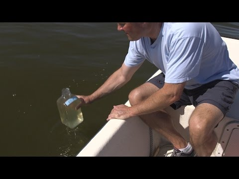Why Fish Are Dying And Algae Is Blooming-Secrets Of Lake Mattamuskeet/ UNC-TV Science