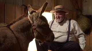 Sweet Donkey - JULIAN SMITH