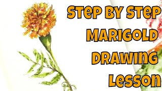 Pen and Ink No Pencil How to Draw a Marigold Flower Step by Step
