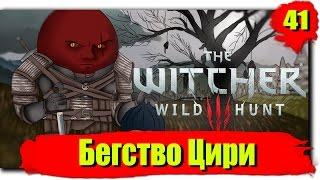 Путешествие по Ведьмак 3: Дикая Охота (Сложность - На смерть!): Серия №41 - Бегство Цири