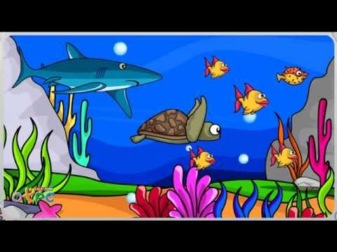 โครงสร้างภายนอกของสัตว์ - สื่อการเรียนการสอน วิทยาศาสตร์ ป.1